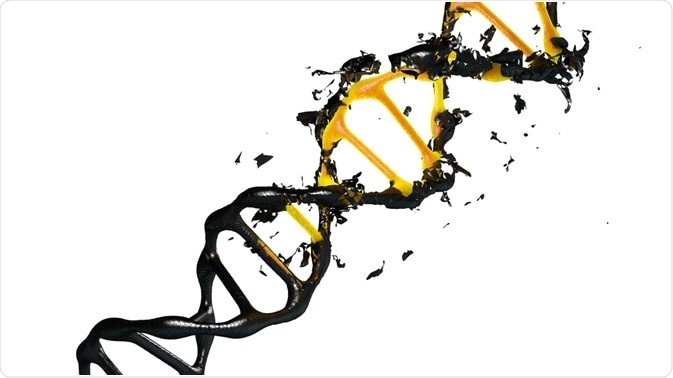 Overcoming Dna Degradation In Forensic Science