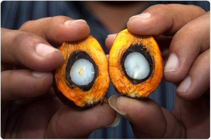 palm oil blood type diet