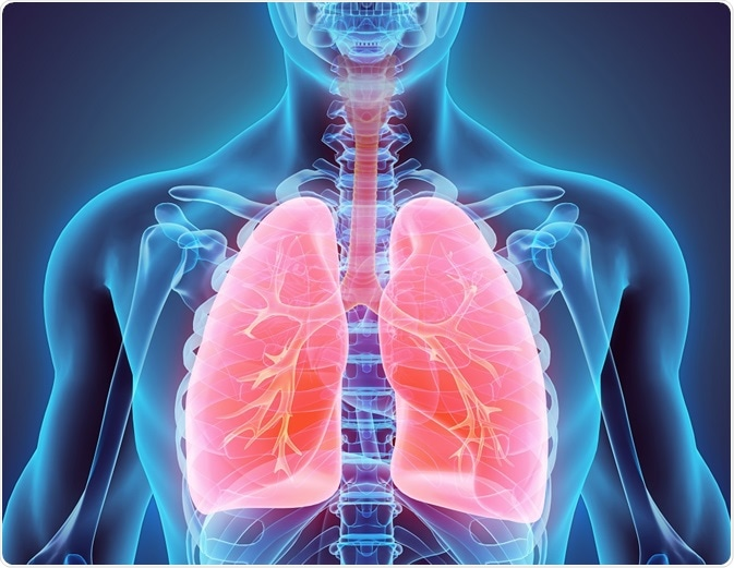 Image result for Pulmonary Diseases