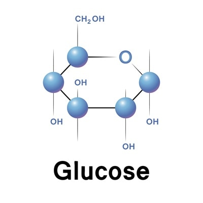 what s the difference between fructose and glucose