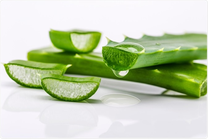 Health Benefits and Dangers of Aloe Vera