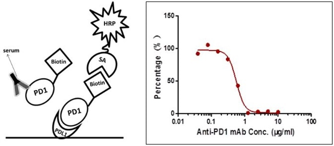 Detection of PD-1 antibody by ligand-directed competitive ELISA.