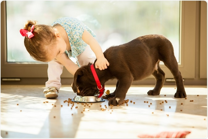 Image Credit: Antoniodiaz / Shutterstock