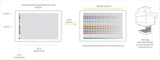 Plate layout and pipetting scheme for the serial dilution method: 20 μl of 14 compounds and two controls are diluted across a complete 384-well plate in a 24-step series of 1:5 dilutions.
