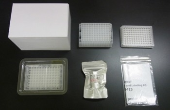 BlotGlyco Glycan Purification and Labeling Kit from S-BIO
