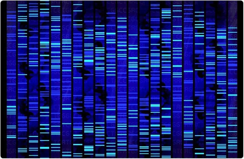 Researchers identify genes associated with aggressive behavior