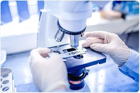 Researchers discover unexpected role of mTORC2 protein in colorectal cancer