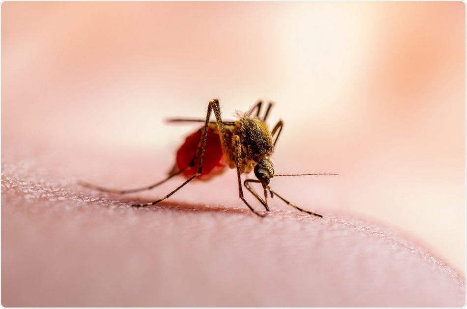 Malaria in India: World Malaria Report (WMR) 2020 released by WHO, which gives the estimated cases for malaria across the world.