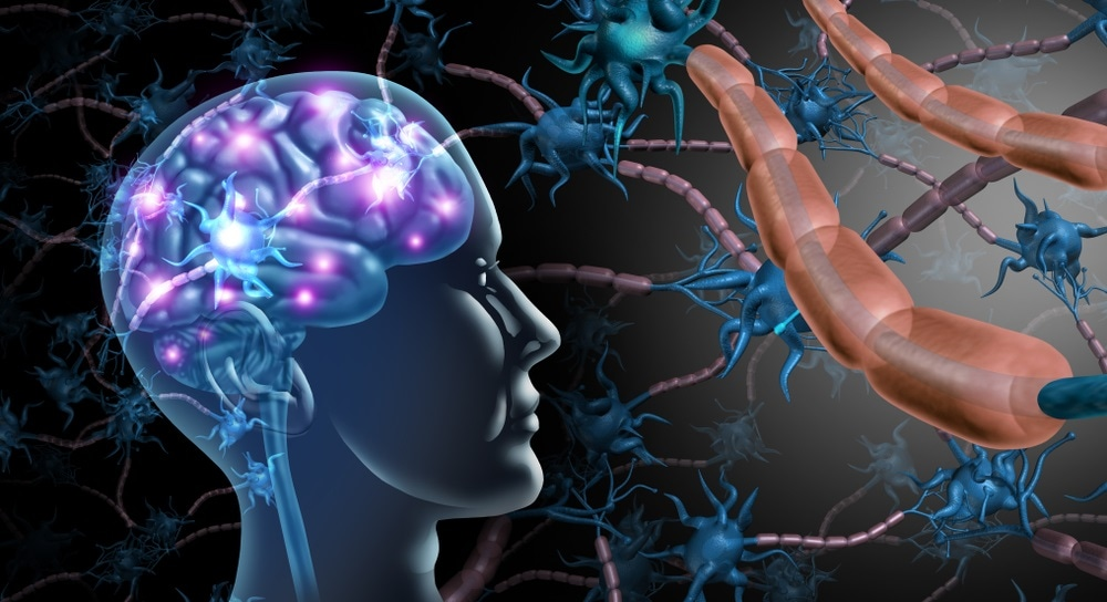 Researchers find new way to protect against disease in MS model