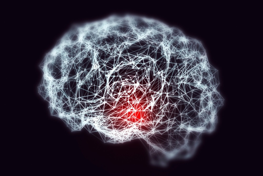 New study uncovers the genetic basis of memory