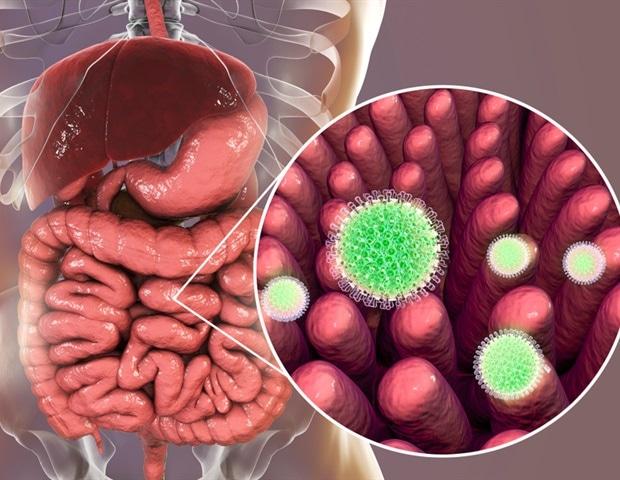 Rotavirus Symptoms