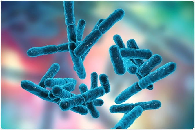 Can Probiotics Ever Be Harmful to Human Health?