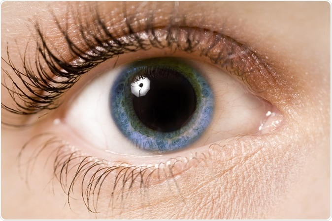 Pupil dilation provides clues to future Alzheimer's risk