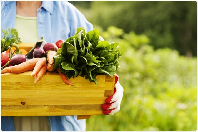 Photo of woman carrying large box of organic vegetables - By gpointstudio