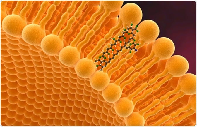 Liposome - Image Credit: CiplaMEDVideo