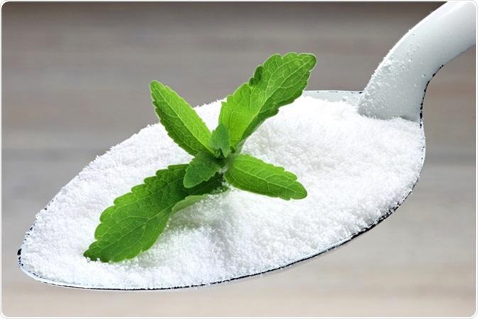 Alternative sweetener stevia. Image Credit: Bjoern Wylezich / Shutterstock