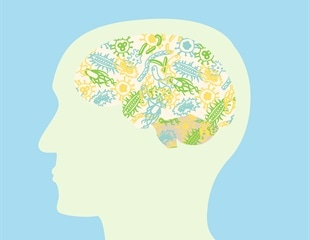 Is There a Link Between Migraine and the Gut Microbiome?
