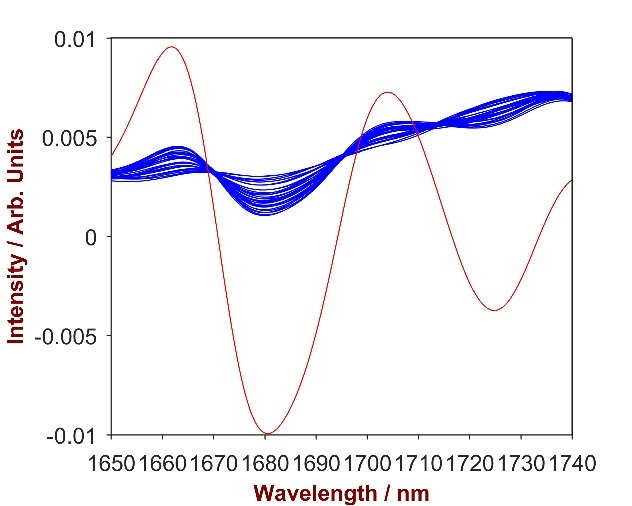 2nd derivative spectra of 16 Carbopol-shampoo mixtures with Carbopol concentration differing from 0.2-2.5% (blue). The overlay with pure Carbopol (red) identifies the significant wavelength region of 1650 – 1740 nm