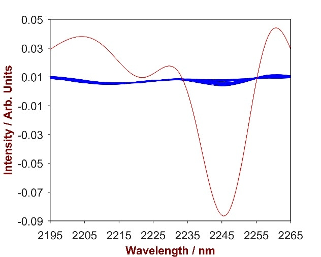 2nd derivative spectra of 11 CAPB-shampoo mixtures with CAPB concentration differing from 0.2%-1.7%% (blue). The overlay with pure CAPB (red) identifies the significant wavelength region of 2195 – 2265 nm