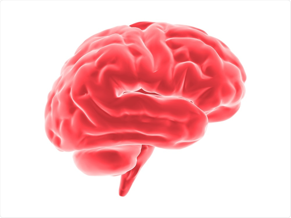 Brain with inflammation