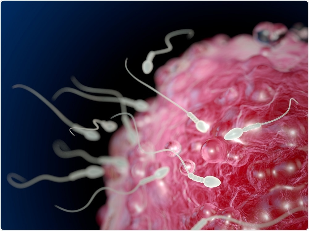 Strong sperm reach the egg, whilst weak sperm are blocked by obstacles