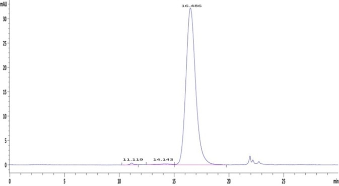 The purity of Human Fc gamma RIIA / CD32a (R167) Protein (Cat. No. CDA-H5221) is greater than 95% as determined in a HPLC analysis.