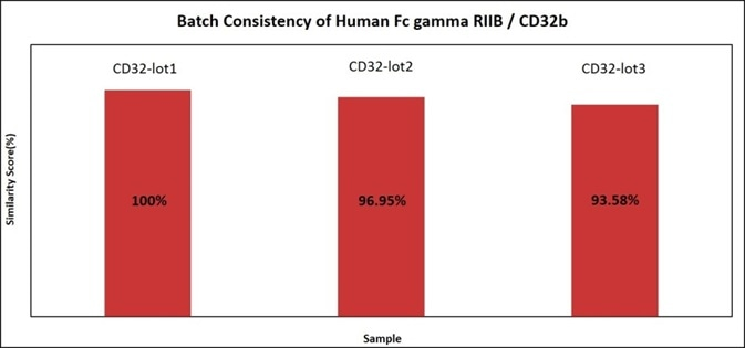 Batch consistency of Human Fc gamma RIIB / CD32b (Cat. No. CDB-H5228). The Similarity for different batchs is more than 90%.