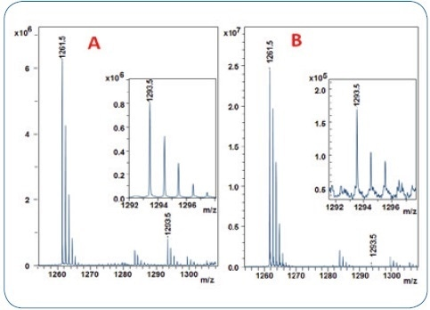 MALDI-TOF analysis of 2 human IgG1 antibody digests using the 10% acetonitrile ZipTip fraction for trisulfide quantitation. A: IgG1 (Pfizer) with 9.5% TSB-peptide content (from Figure2) B: adalimumab with only 0.65 % of TSB-peptide.