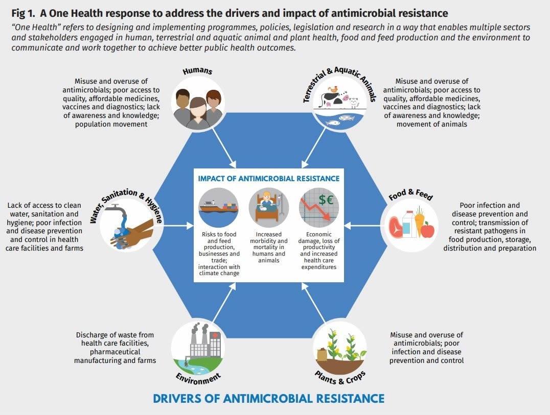 Report on antibiotic resistance should make alarm bells