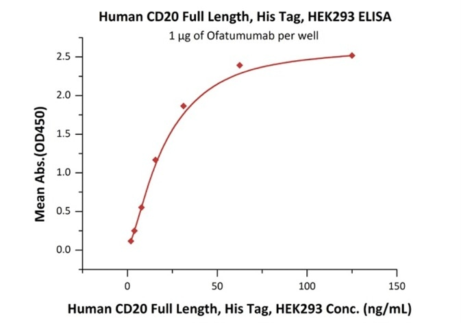 Immobilized Ofatumumab at 10 μg/mL (100 μL/well) can bind Human CD20 Full Length, His Tag, HEK293 (Cat. No. CD0-H52H3) with a linear range of 2–31 ng/mL.