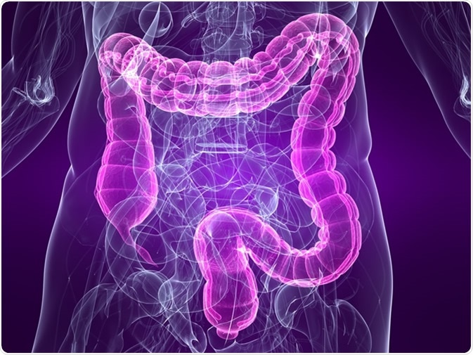 image.axd?picture=2019%2f4%2fshutterstock 17868235 - Post-Infectious Irritable Bowel Syndrome