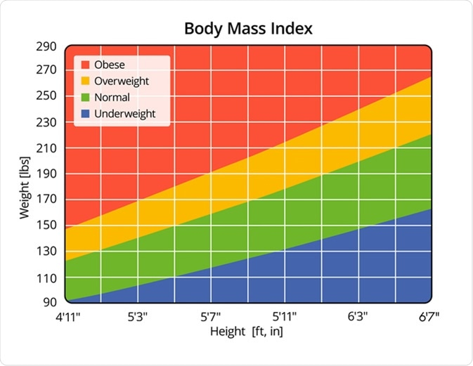 Body Mass Index in lbs and ft, in - Illustration Credit: Zerbor / Shutterstock