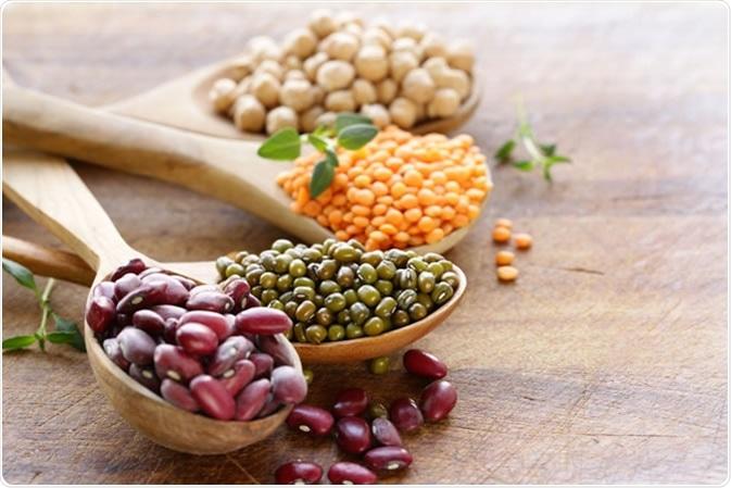 Various legumes - beans, lentils, chickpeas, mung beans - Image Credit: Dream79 / Shutterstock
