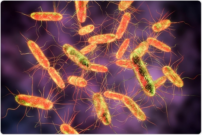 African bacterium resists almost all drugs