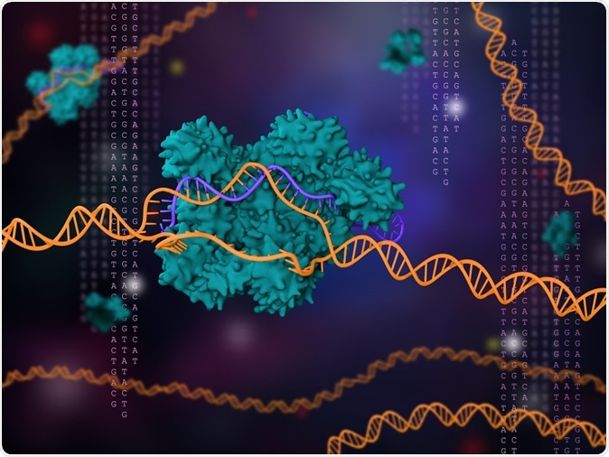 3d illustration of CRISPR-Cas9 technology - Image Credit: Meletios Verras / Shutterstock