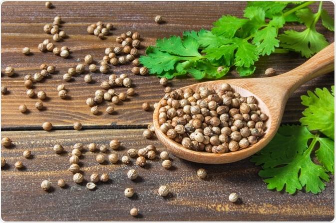 linalool en aceite de cilantro para diabetes