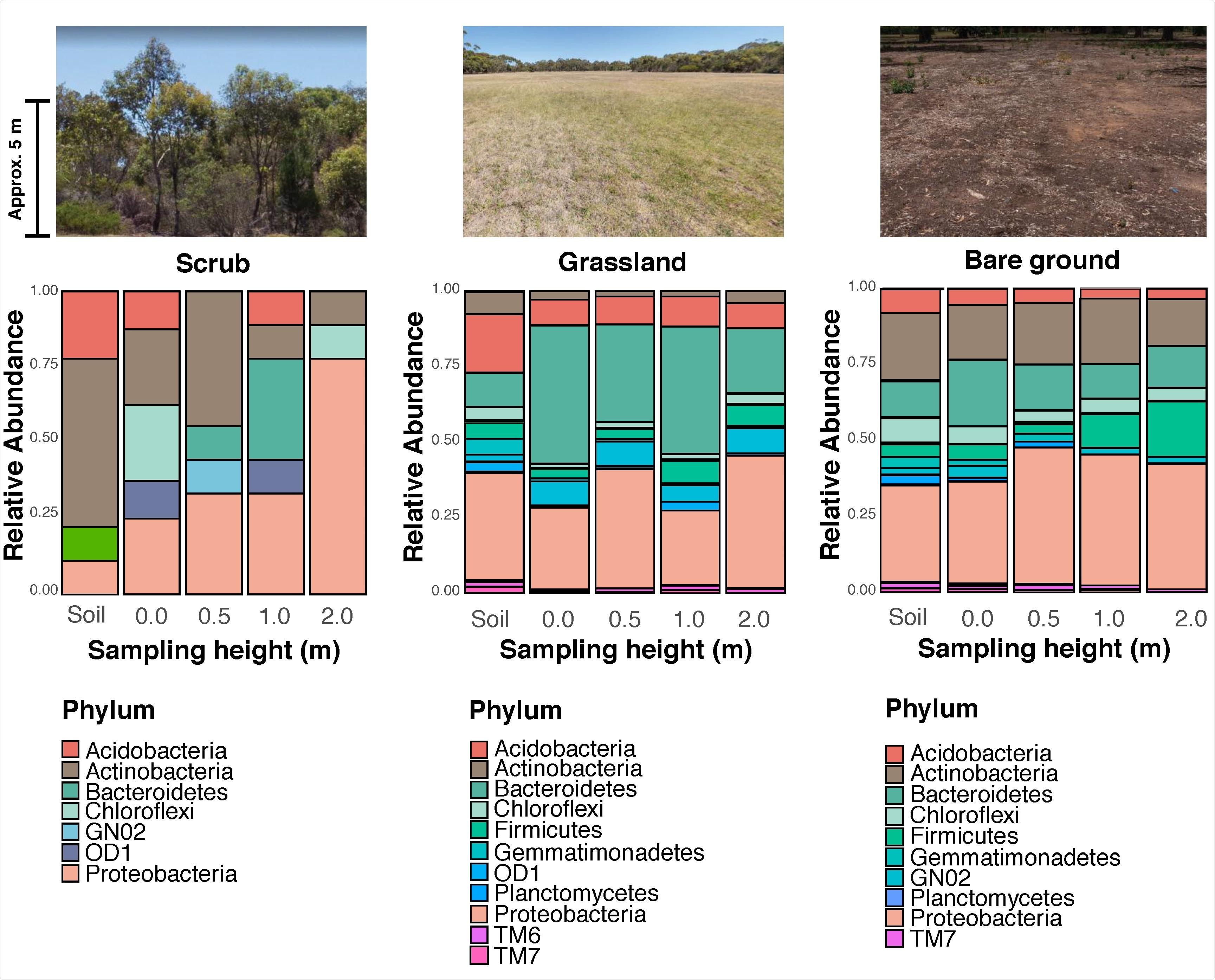 Profile of bacterial communities from each habitat at the phylum level. The coloured area of each bar represents the relative abundance of the corresponding phylum over 1%. The X-axis displays sampling heights: soil, 0.0 m, 0.5 m, 1.0 m, and 2.0 m (from left to right). The photographs above the plots show examples of each habitat used in the study (photographs by authors).