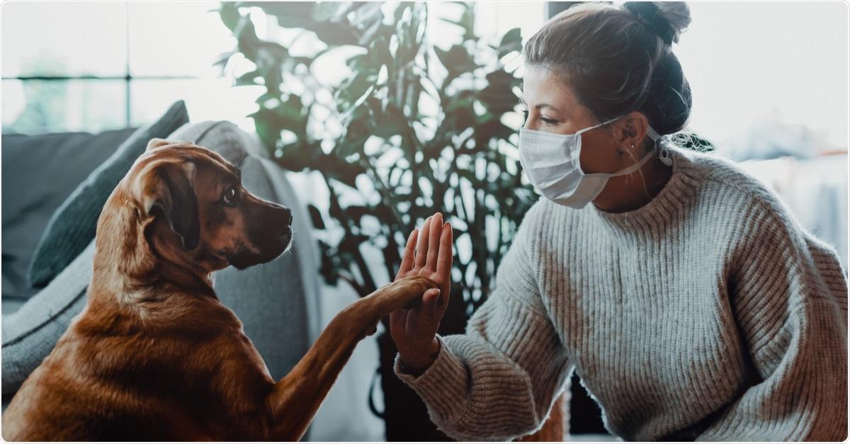Infección SARS-CoV-2 en animales domésticos en los hogares positivos COVID-19: Un estudio de caso