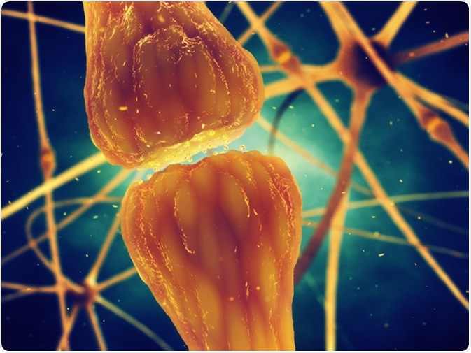 Cuáles son neurotransmisores?