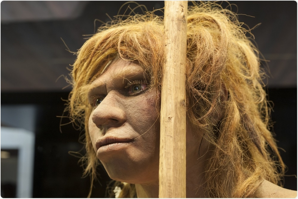 Madrid, Spain - Life-sized sculpture of Neanderthal female at National Archeological Museum of Madrid. Image Credit: J By Juan Aunion / Shutterstock