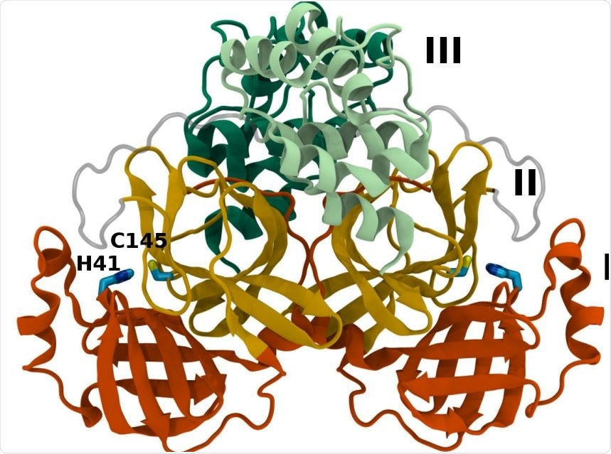 Mpro dimer structure and binding site interactions (PDB entry 6WQF). Mpro homodimer with the three domains illustrated and color coded as follows: Domain I (dark orange), domain II (gold), and domain III (light green/dark green monomer A/B) with the catalytic dyad residues, His41 and Cys145 (rendered in licorice).