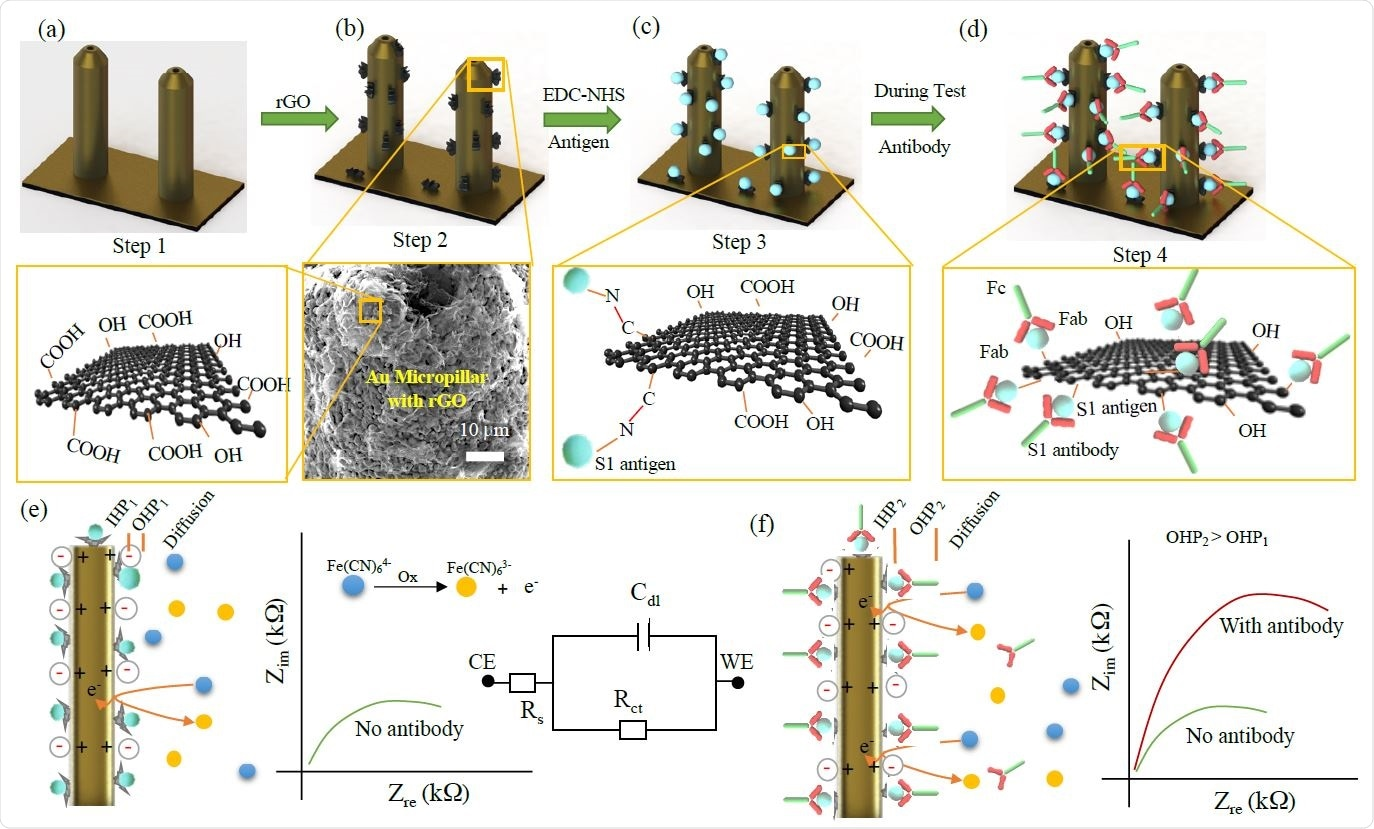 Functionalization of 3D Printed Micropillar Electrode and 3DcC Sensor Operation.