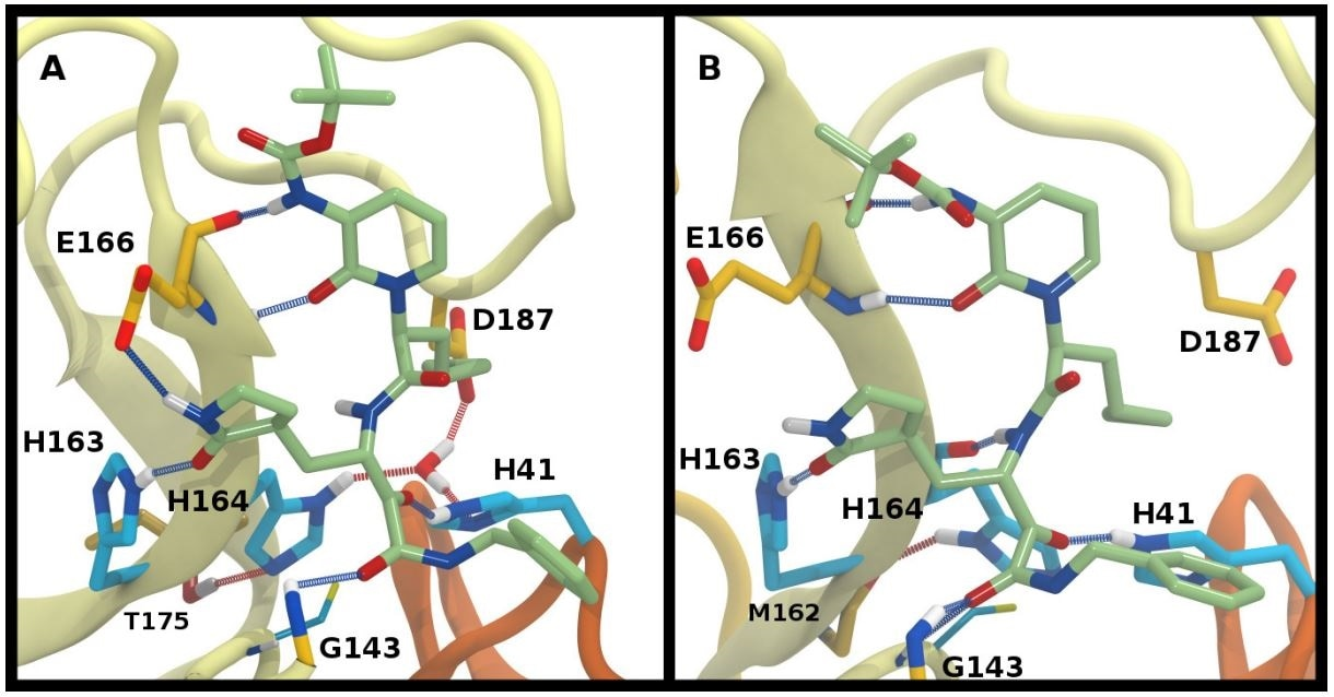 Ketoamide hydrogen bonding in the HE41-HD164 protonation state. In both panels, hydrogen bonds between the ligand (light green licorice) and the protein are indicated with a blue line, while those with water or between protein residues are red. A) Region around the crystallographic water. B) conformation in which the His164 has rotated, making a hydrogen bond with the backbone of Met162. The crystallographic water has been released.