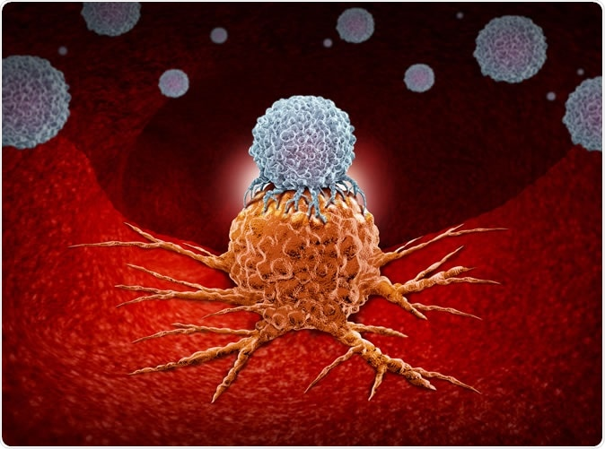 Immunotherapy as a human immune system therapy concept as a biomedical or biomedicine oncology treatment using the natural cancer fighting properties of the body. Image Credit: Lightspring / Shutterstock