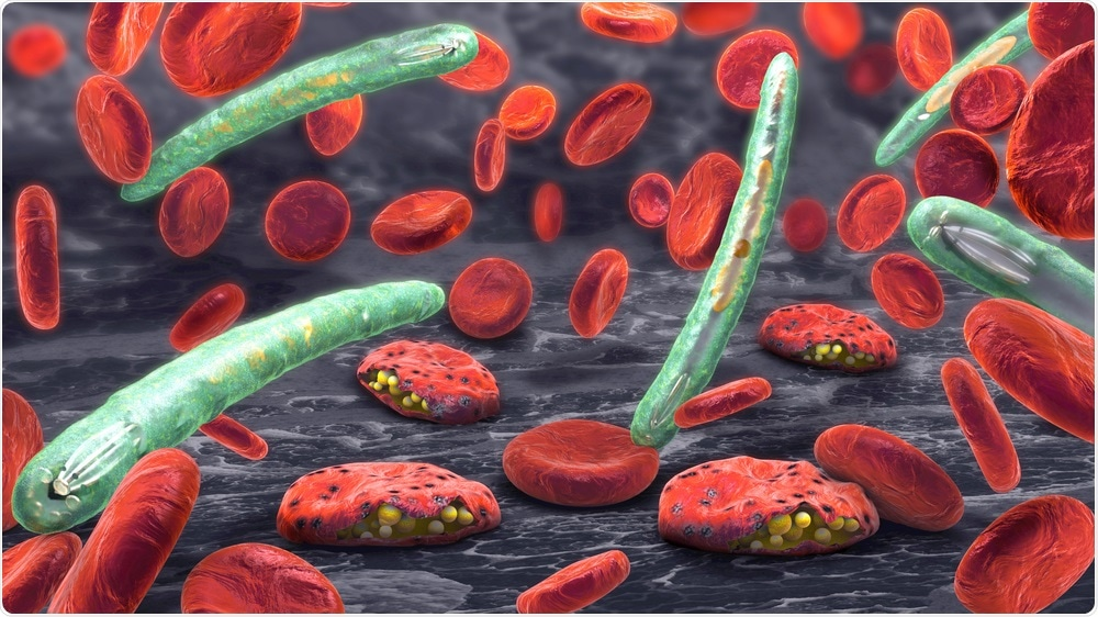 Plasmodium Causing Malaria
