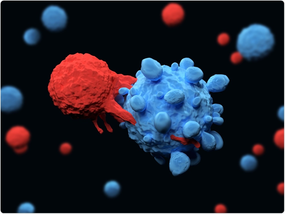 T-Cell Killing Cancer Cell