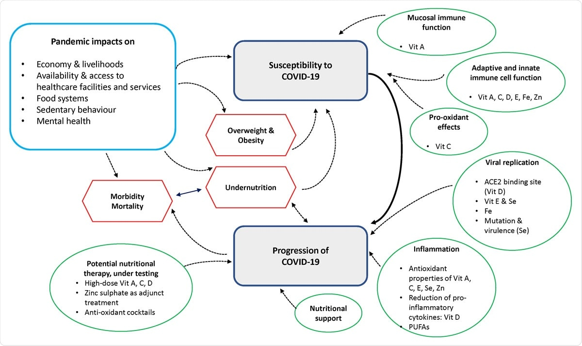 Overview diagram with key concepts from narrative synthesis