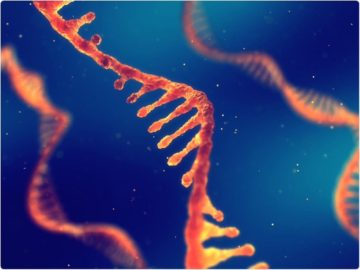 New research on small non-coding RNAs and SARS-CoV-2