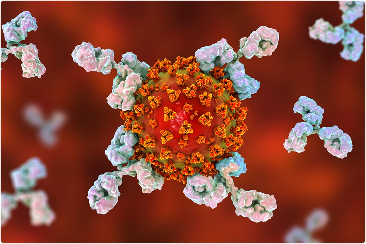 Study: Less severe course of COVID-19 is associated with elevated levels of antibodies against seasonal human coronaviruses OC43 and HKU1 (HCoV OC43, HCoV HKU1). Image Credit: Kateryna Kon / Shutterstock
