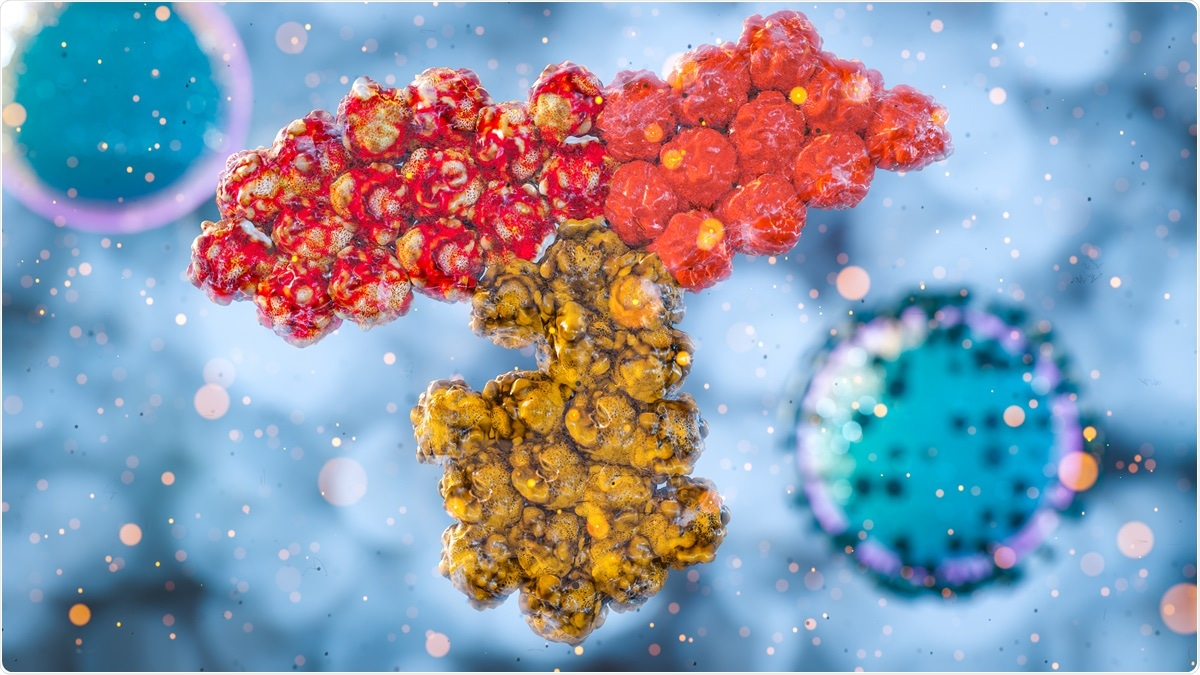 Study: Antibody Immunological Imprinting on COVID-19 Patients. Image Credit: CI Photos